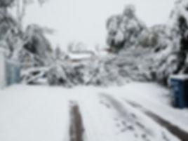 Ice Storm 2014.jpg