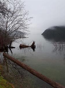 Cowichan Lake.jpg