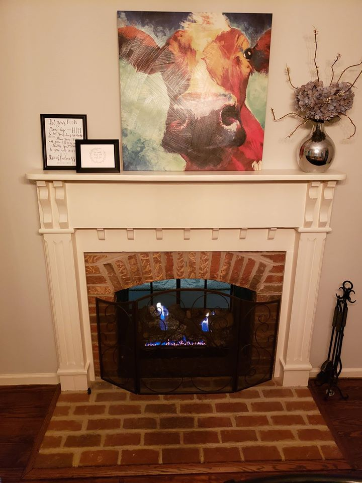2 Way Fireplace