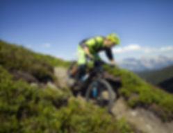 Biking Gosau Lake-Ebike Rental