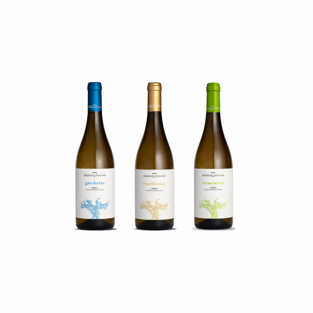 Visita & Degustazione di 3 Vini Bianchi