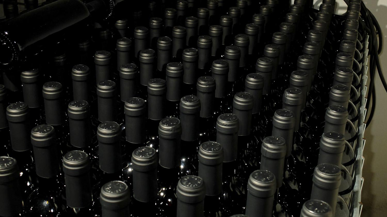 le Bottiglie in cantina