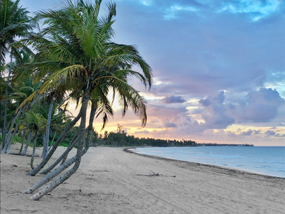 Caribbean Comeback