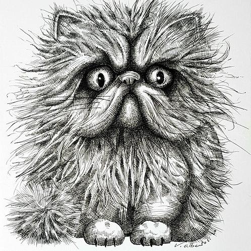 cat illustration funny persian persan china ink encre de chine dessin drawing valerie albertosi
