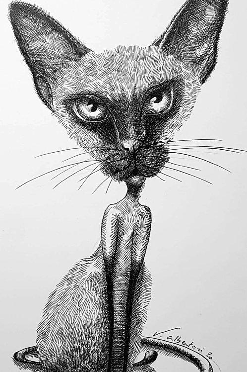 art illustration dessin encre de chine chat cats siamese siamois fun strange valérie Albertosi aquarelle