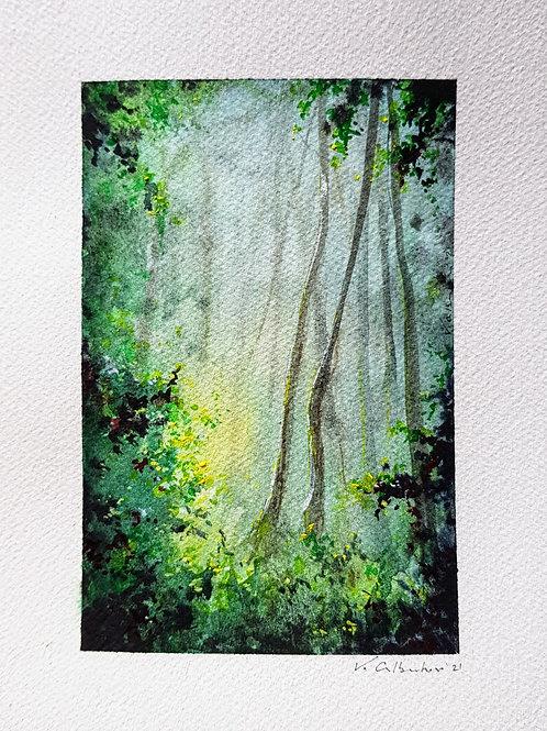 peinture aquarelle beau paysage foret et bois arbres vert magique poésie lumière du ciel valerie albertosi
