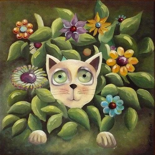 cache cache à chat