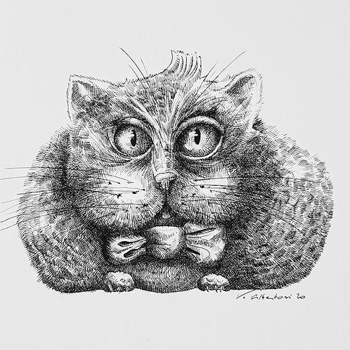 art illustration dessin contemporain valérie Albertosi aquarelle chat encre de chine noir et blanc fun funny cat big cute