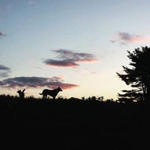 Maine mornin'. #igersmaine #Westbrook.jp