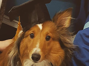 Congrats to Dusty on graduating Gooddogz