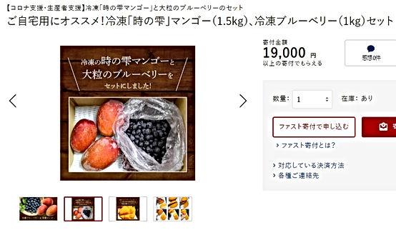 ふるさと納税返礼品冷凍マンゴ-.jpg