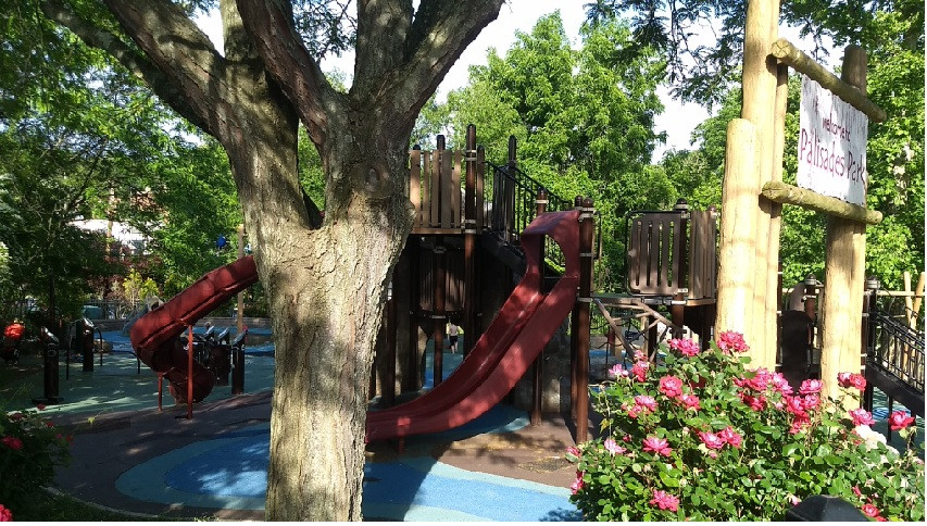 park  - STEM summer camp for kids washin