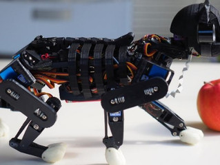 Opencat: The open source cat madeof arduino, artificial intelligence and 3D printing