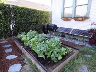 FARMBOT: The open-source robotic planter for your garden