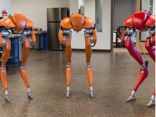 Cassie the bipedal robot: Artificial intelligence and robotics to evolve in an hostile environnement