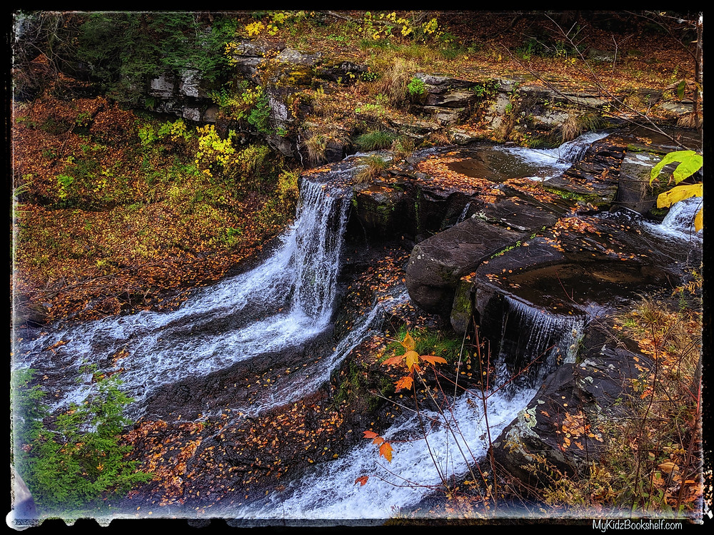 waterfall over rocks with fall foliage and leaves on ground
