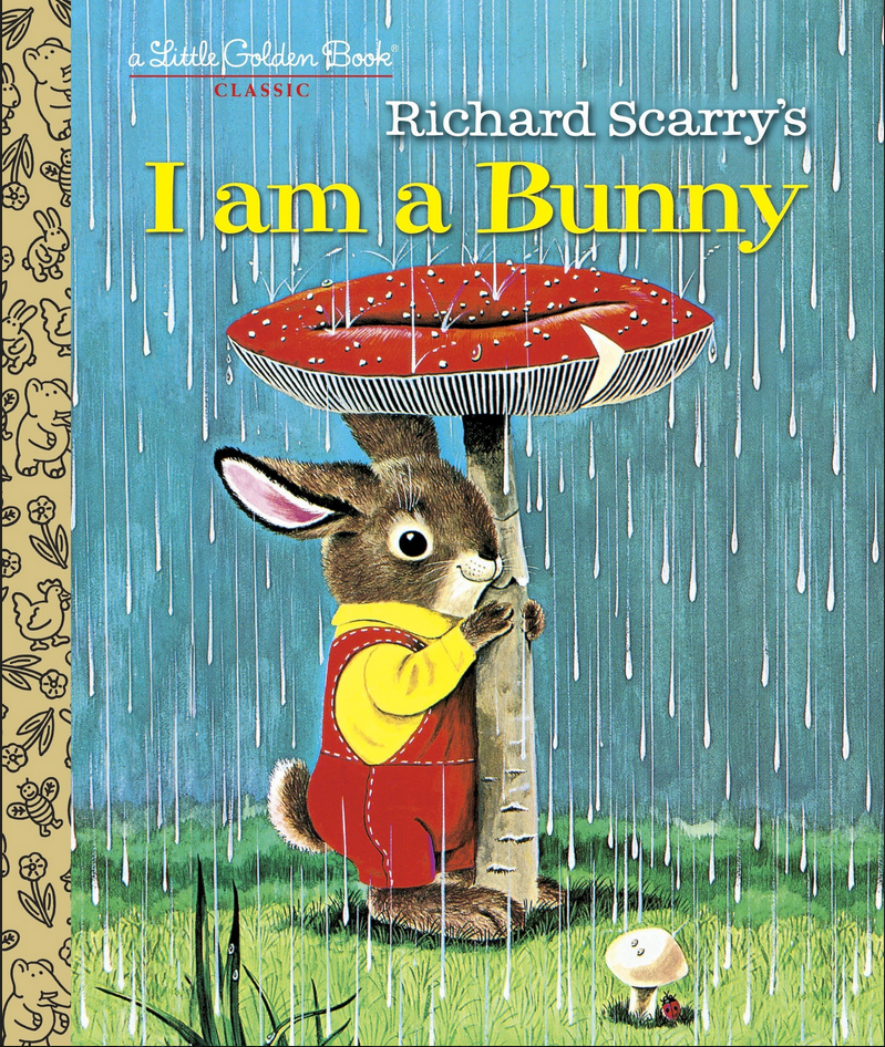 bunny standing underneat a mushroom in a rainstorm
