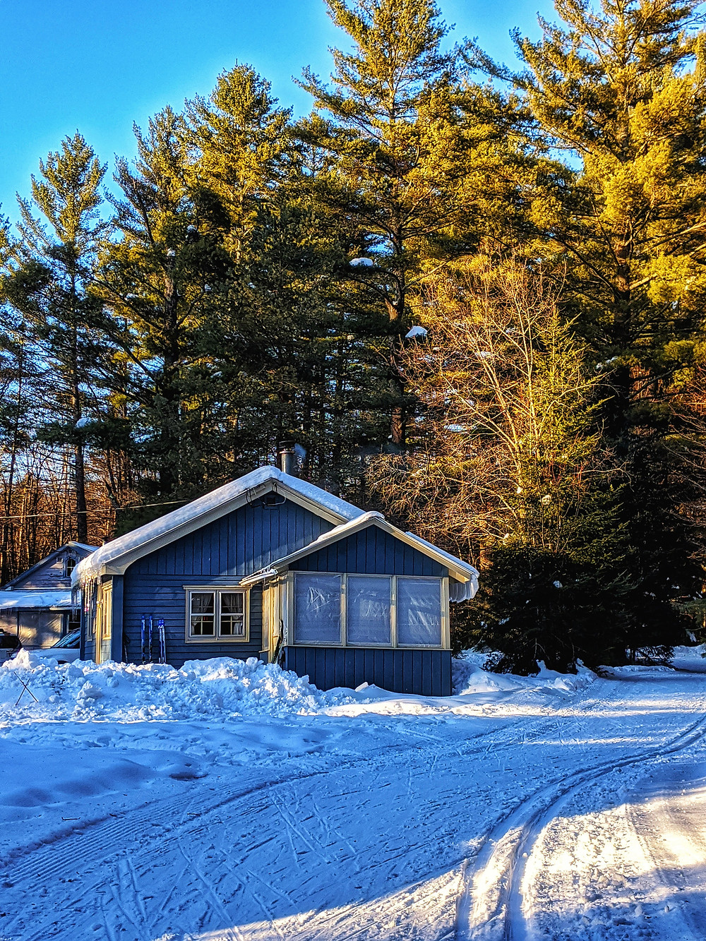 cottage with windows in front of trees with cross country ski trails in front of it.
