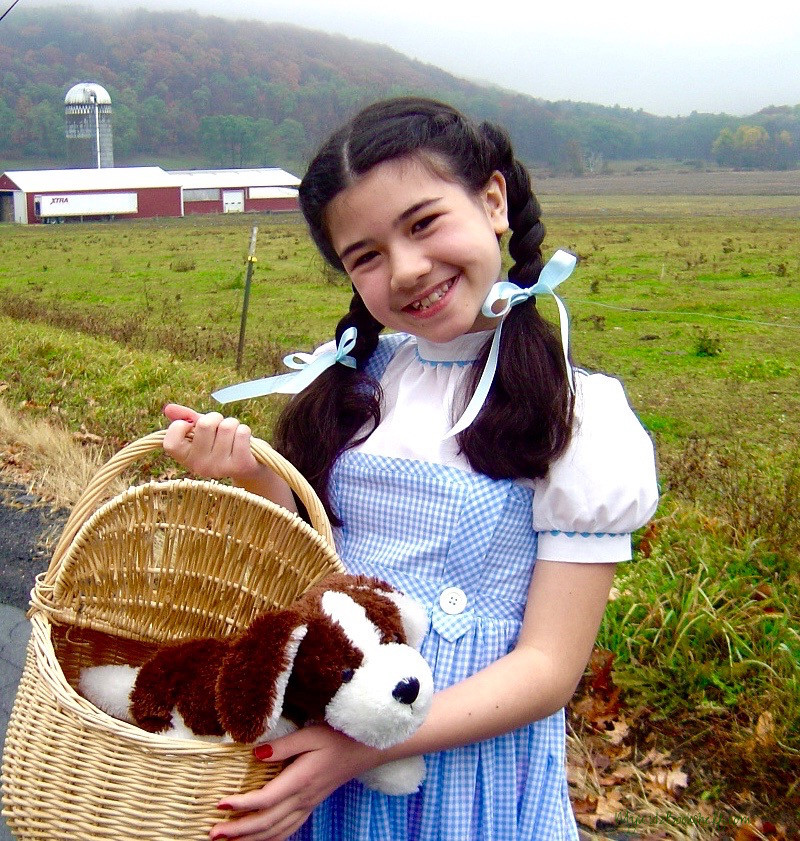 little-girl-dressed-up-as-dorothy-from-the-wizard-of-oz