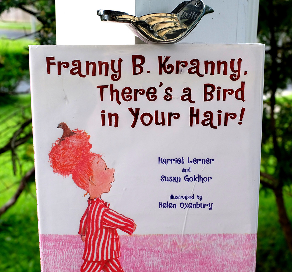 Book cover of girl wearing pajamas with hair in top bun and bird sitting in it like a nest!
