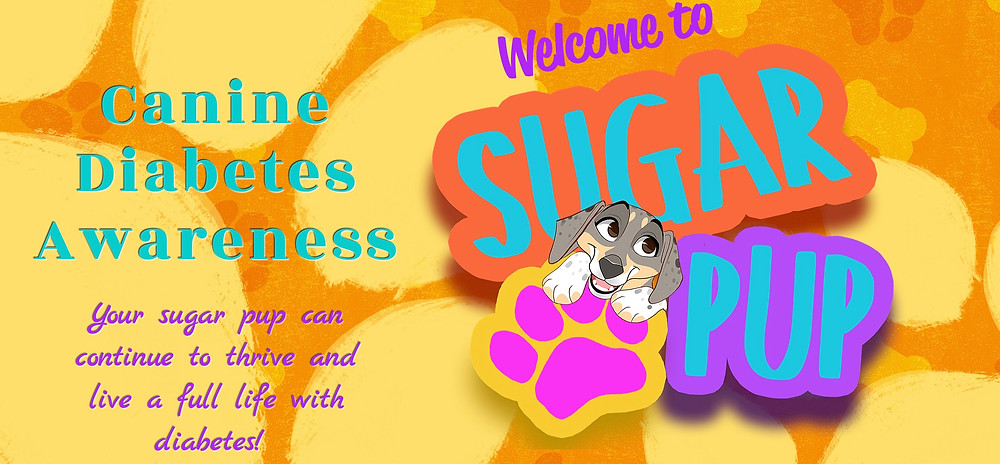 Header from Sugar Pup.org a website for questions, answers and information pertaining to canine diabetes