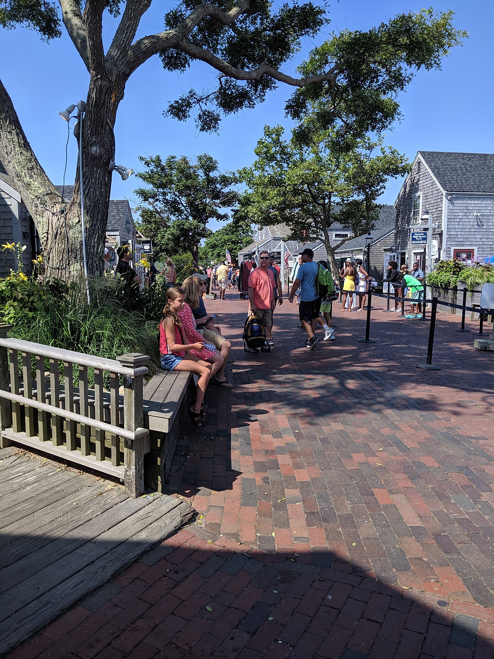 Off-the-ferry-in-Nantucket