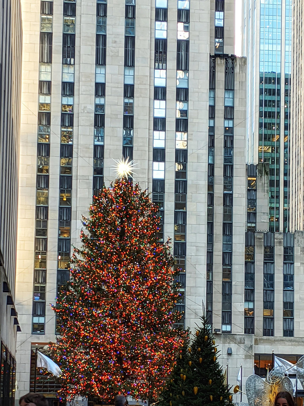 The-Christmas-Tree-in-Rockefeller-Center