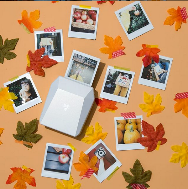 photographs with fall leaves