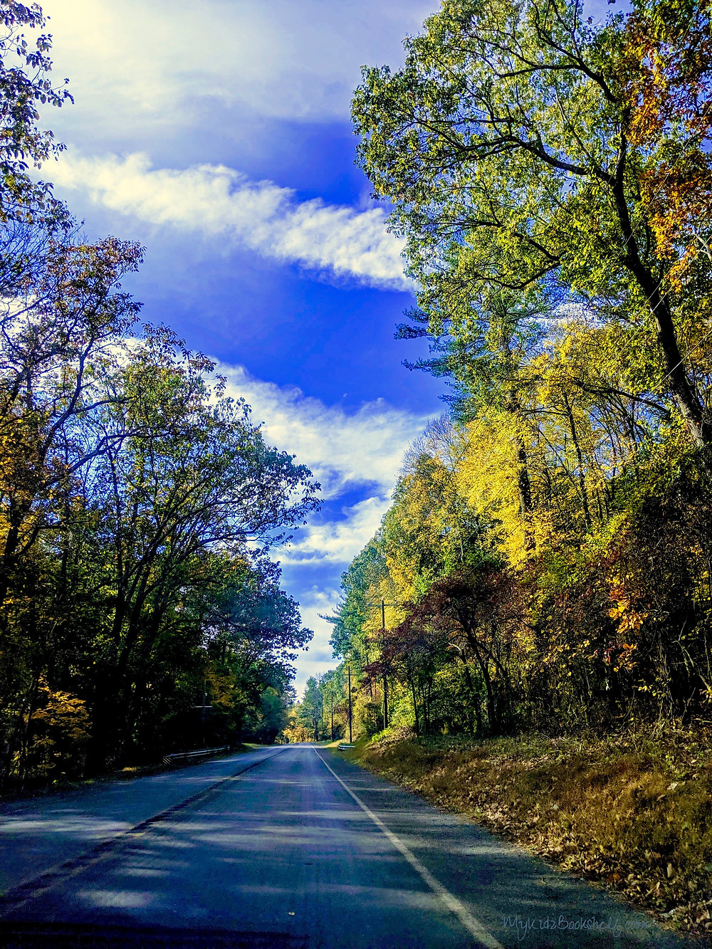 picture-of-road-with-sky-and-woods-on-side
