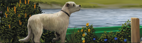 illustration dog looking out at pond