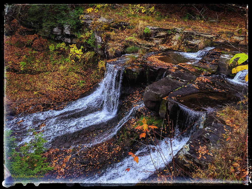 fall scene of waterfall with leaves