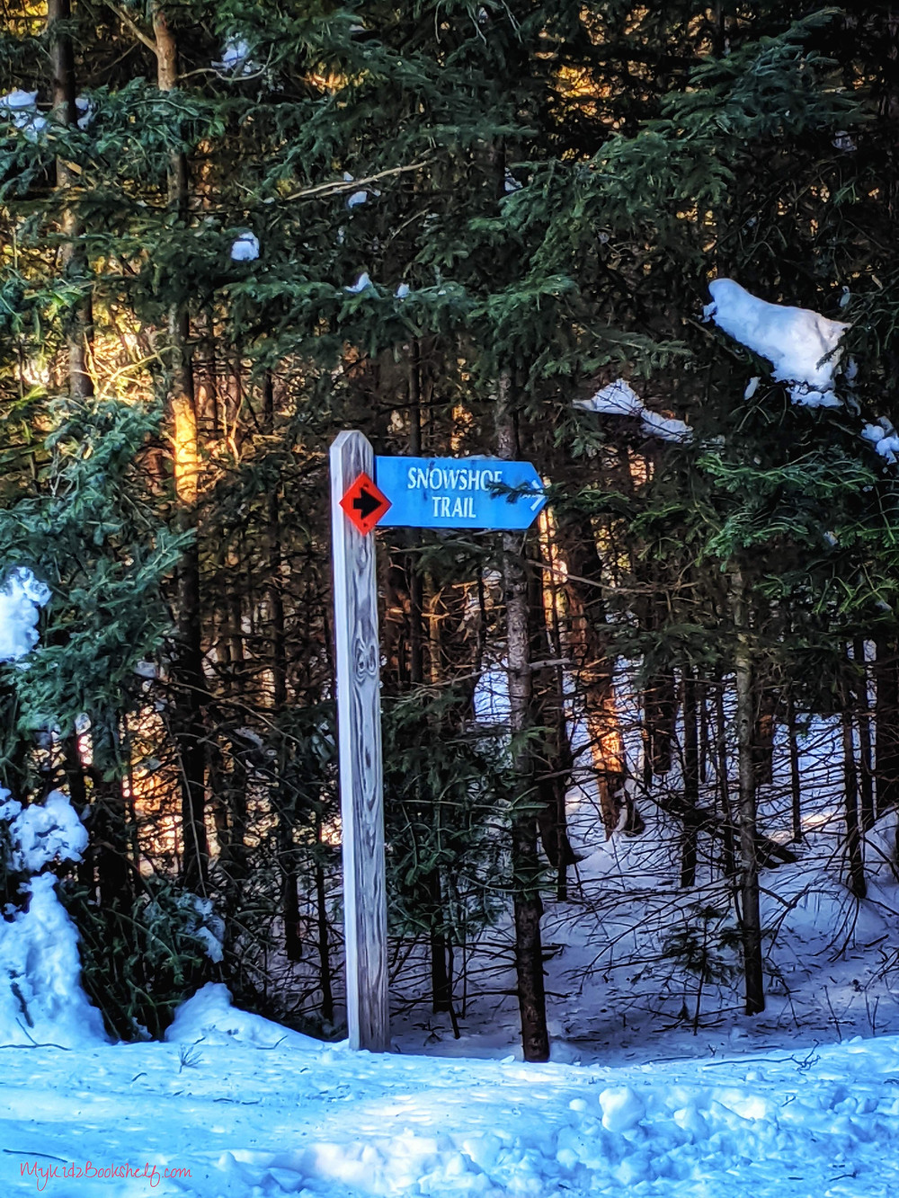 showshoe trail marker with pine trees and snowy ground around