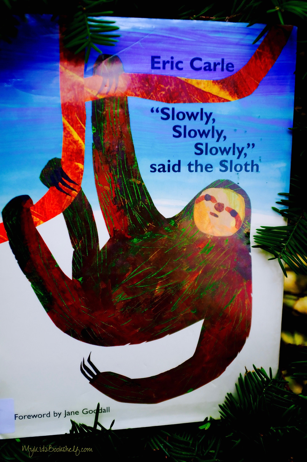 Cover-art-for-the-picture-book-slowly-slowly-slowly-said-the-sloth-by-Eric-Carle