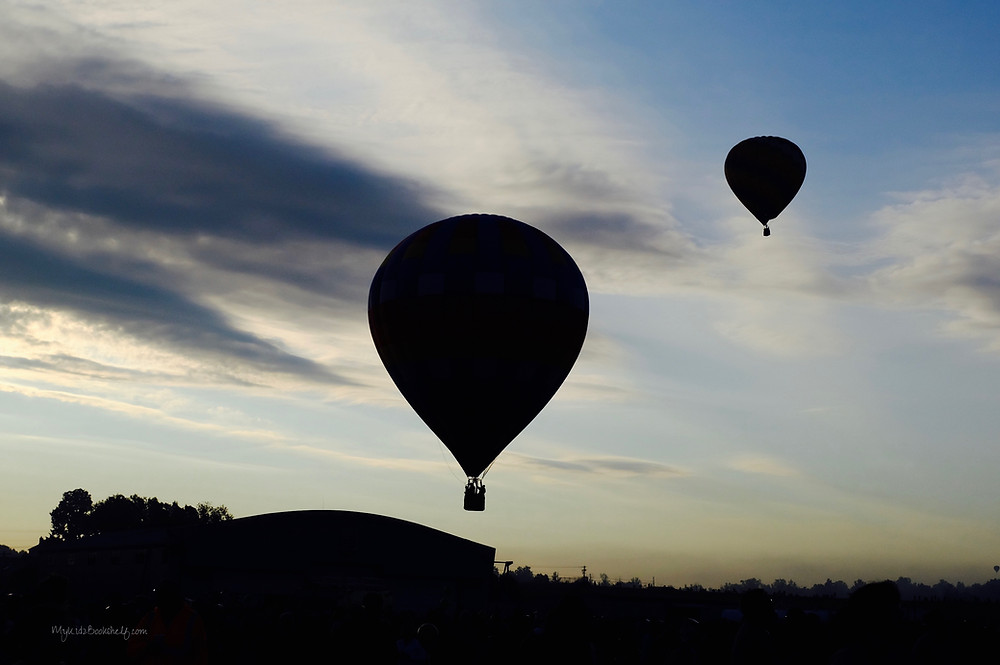 Adirondack-hot-air-balloon-festival-unicorn-A-fun-start-to-fall-at-the-Adirondack-hot-air-balloon-festival-sillhouette