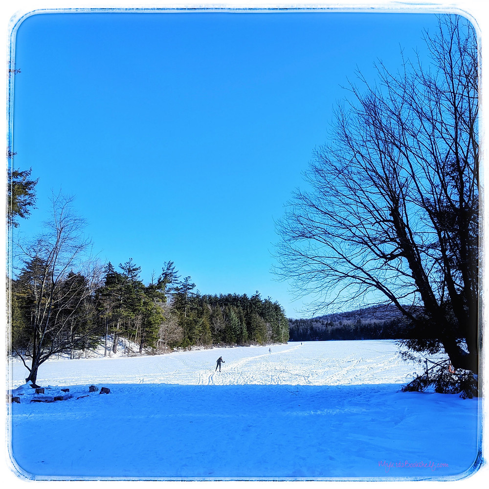 winter scene with Lapland Lake with snow and skier with clear blue skies and trees lining the snow-covered lake