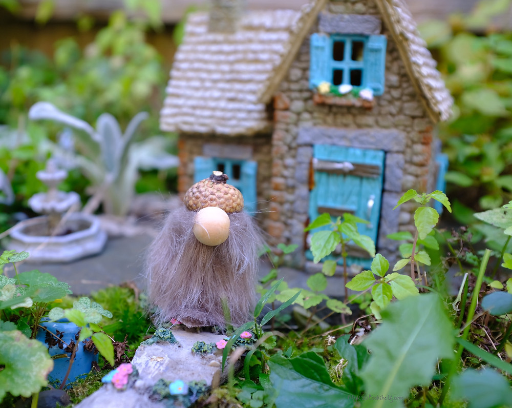 cute gnome in fairy garden