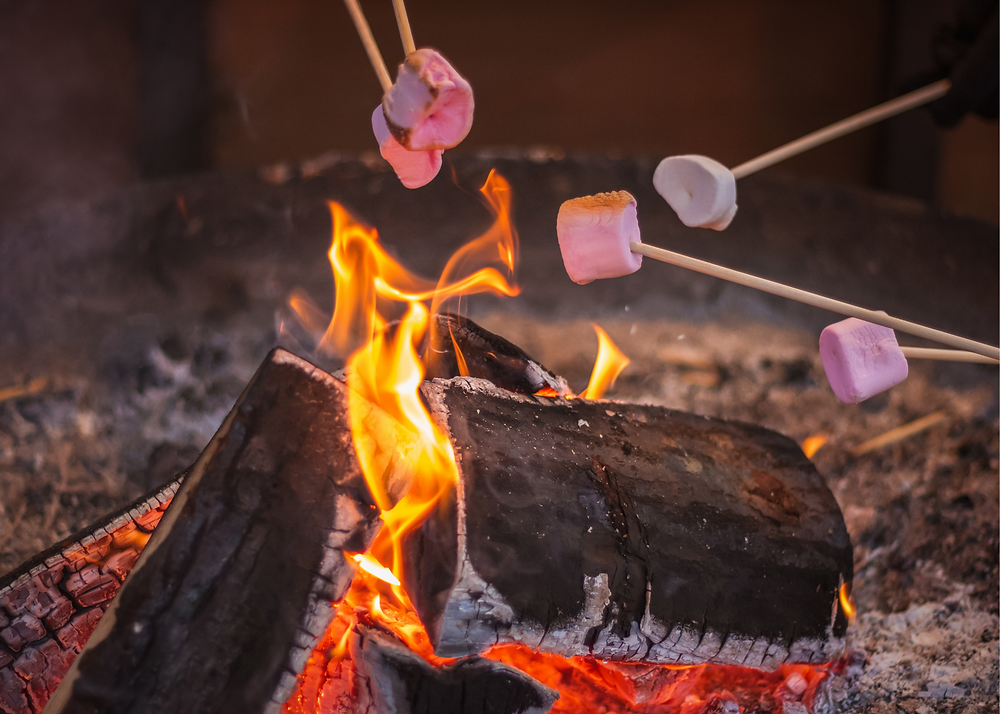 campfire with marshmallows being roasted over it
