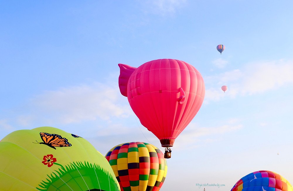 Adirondack-hot-air-balloon-festival-unicorn-A-fun-start-to-fall-at-the-Adirondack-hot-air-balloon-festival-pink-pig
