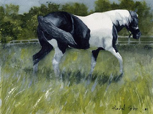 """""""Paint Field Day"""" Giclée"""