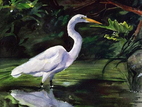 """Egret in Green"" Giclée"