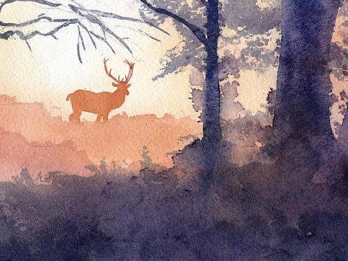 """Deer at Dawn"" Giclée"