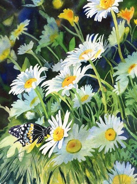 """Butterfly on Daisies"" Giclée"