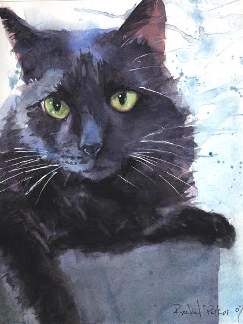"""Sadie Splash"" Black Cat Giclée"