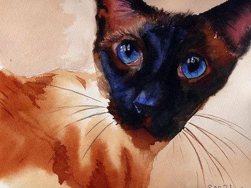 """Lumina"" Siamese Cat Giclée"