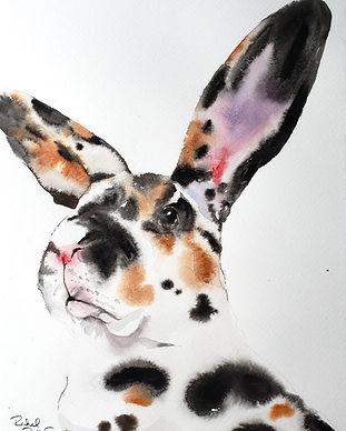 Bunnybigearssmaller.jpg