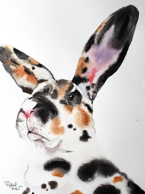 Wet on Wet Calico Bunny Watercolor Tutorial