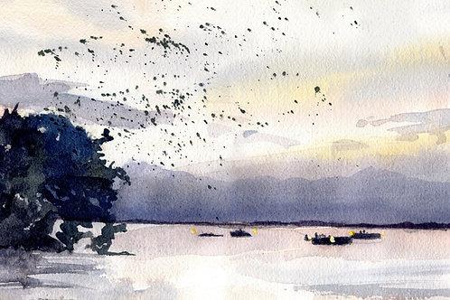 """Martin Dusk"" Lake Murray Martins South Carolina Art Giclée"