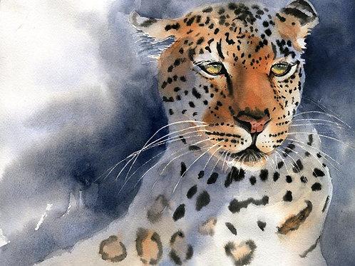"""""""Leopard Portrait"""" Giclée"""