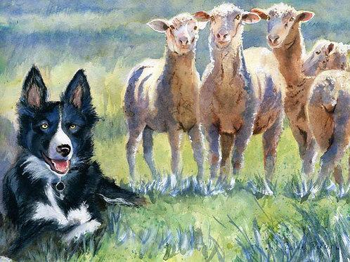 """Sheepdog and Sheep"" Giclée"