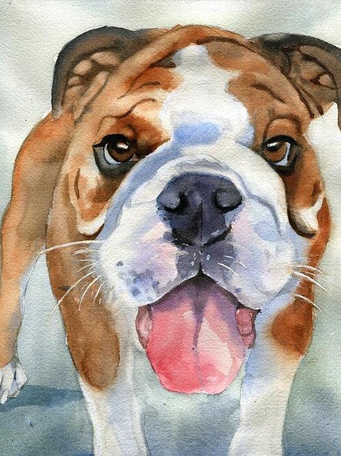 """Bulldog Puppy"" 8 x 10"" Original Watercolor"